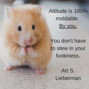 the art of attitude